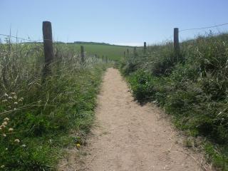 Devon footpath